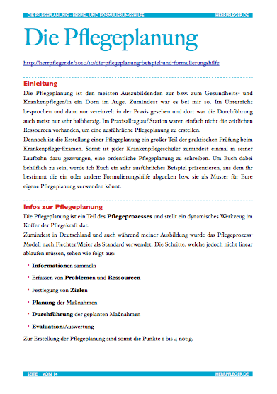 Pflegeplanung_download
